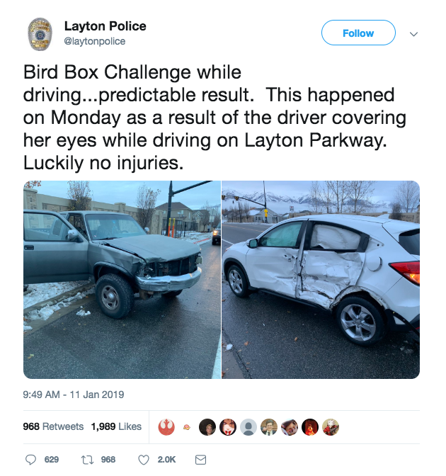 Bird Box Challenge Car Accident
