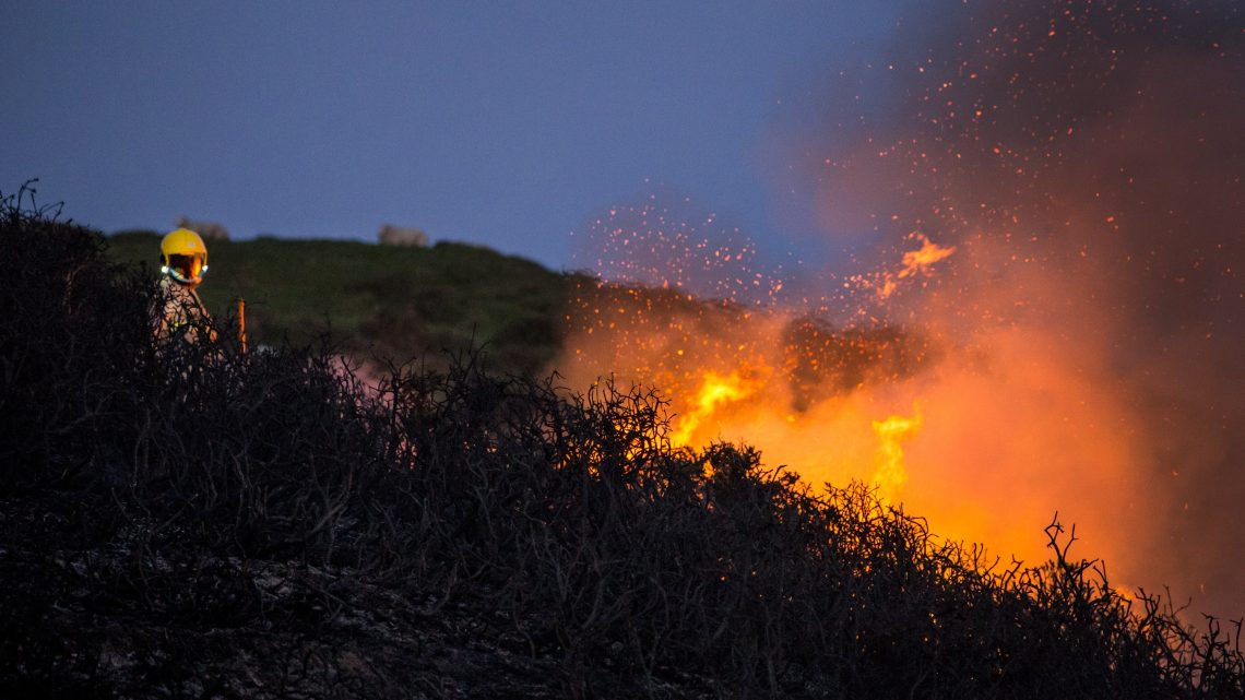 wildfire burning hillside